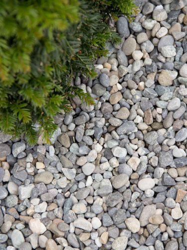 Alpenkies 8 - 16mm Garten
