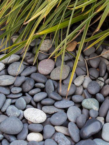 Beach pebbles 16 - 25mm aangelegd