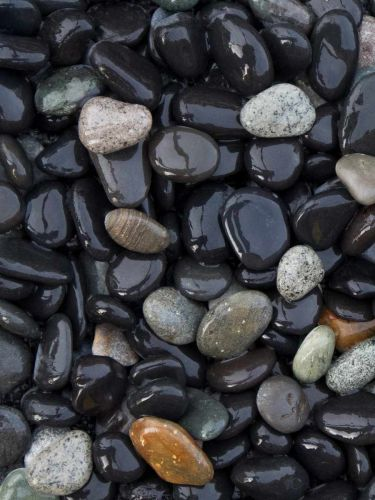 Beach pebbles 8 - 16mm (nat)