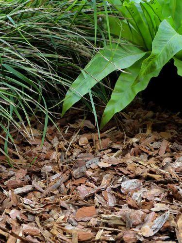 Corteza de pino 10 - 25mm instalada en jardín