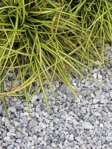 Ice Blue Splitt Ziergarten 8 - 16mm