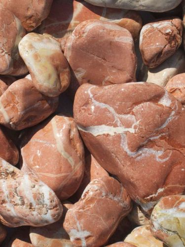 Marmor Rot Kies Gabionensteine 40 - 80mm naß