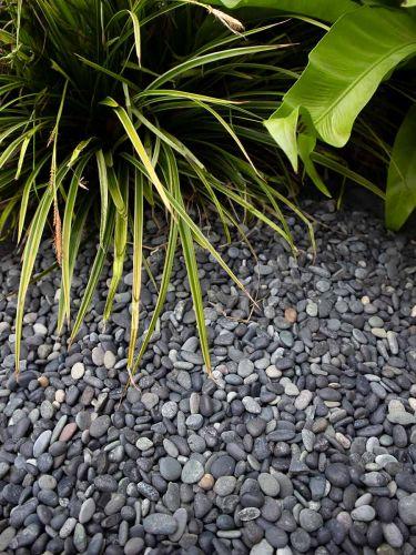 Piedra de mar negra 5 - 8mm instalada en jardín