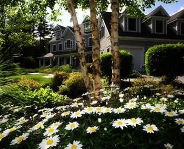 De Amerikaanse tuin: hoe creëer ik die?