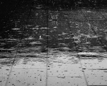 22 oplossingen - Bescherm je tuin tegen regen en hitte