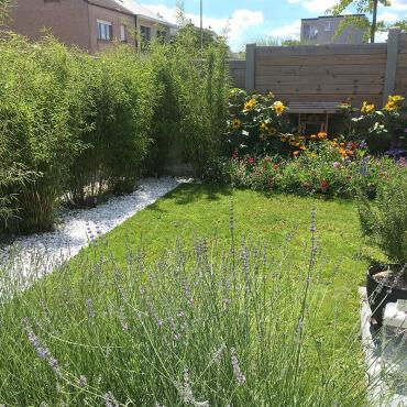 Neue Gartentrends 2021 Naturgarten