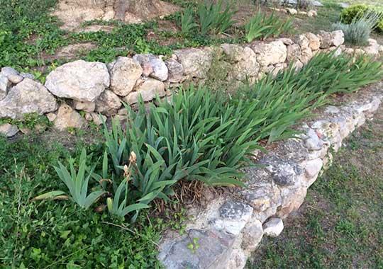 Steingarten mit Hanglage