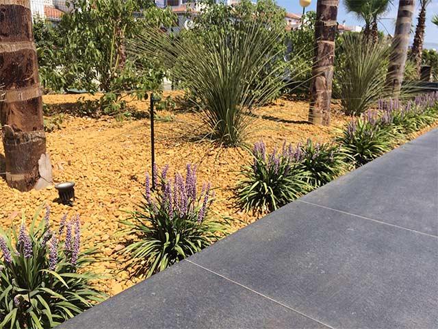 Jardin con gravilla y plantas