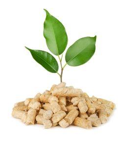 houtpellets milieuvriendelijk