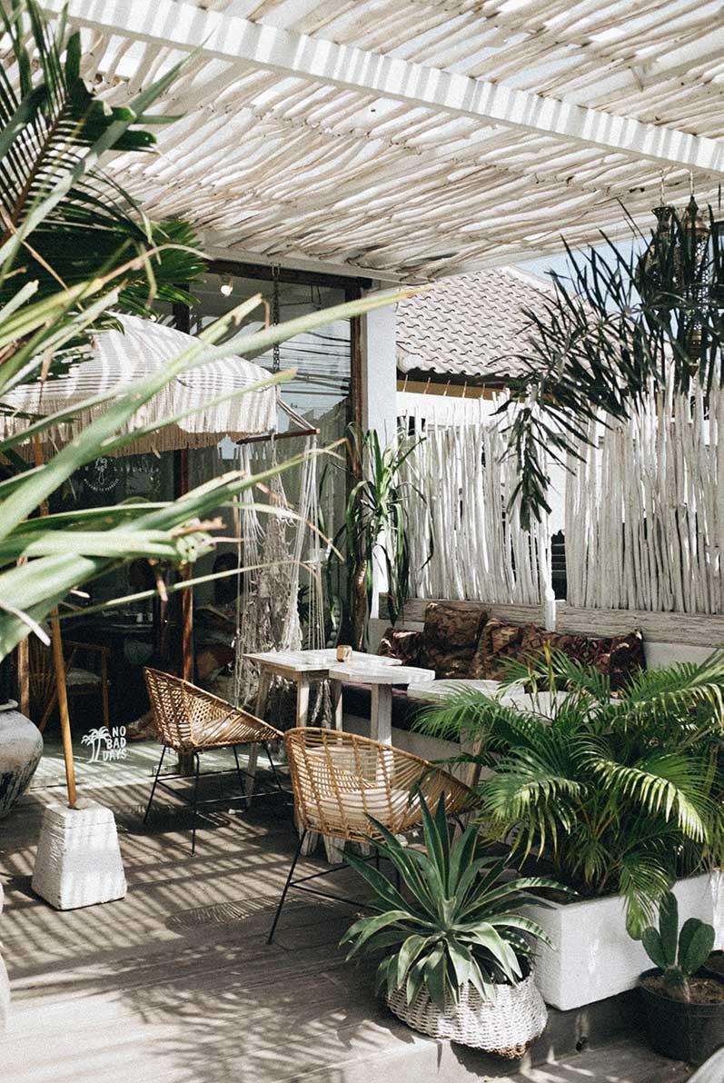 Terraza con plantas tropicales